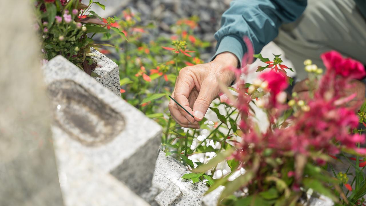あきらめる人が急増中…どうする?意外と高額な「お墓の値段」