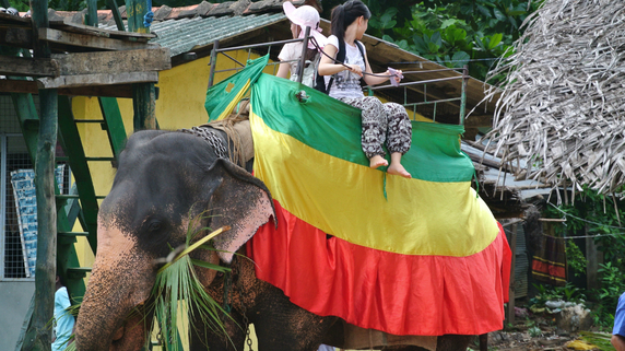スリランカ観光産業が不動産分野に与えるインパクトとは?