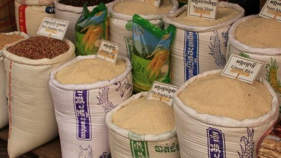 「お米の商品先物取引」…取り扱い銘柄は4種類、意外な品種も