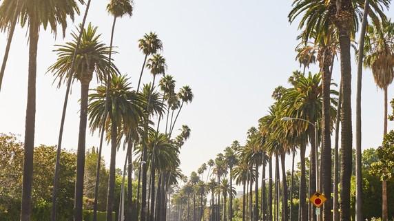 日本人投資家が「ロサンゼルス不動産投資」で儲けるには?