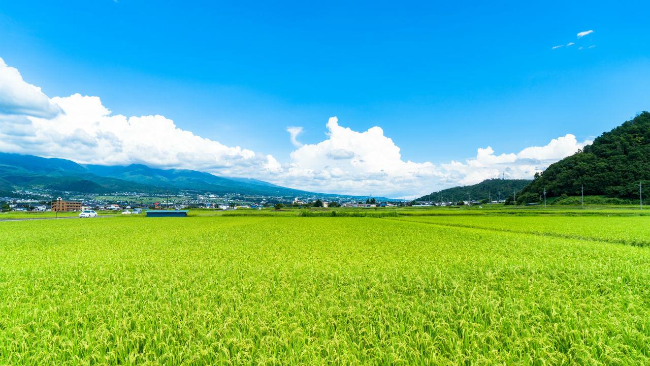 田や畑・・・農地における「評価単位」とは?