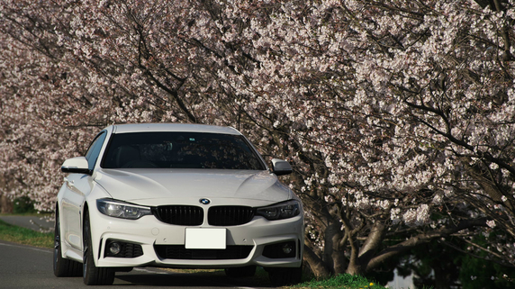 BMW日本法人に立ち入り検査…「新古車」の販売事情とは