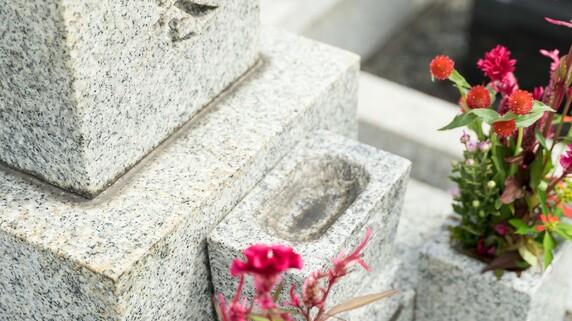 なぜ「樹木葬」で埋葬された亡母の骨は掘り起こされたのか…「終活」で生じる親族トラブル