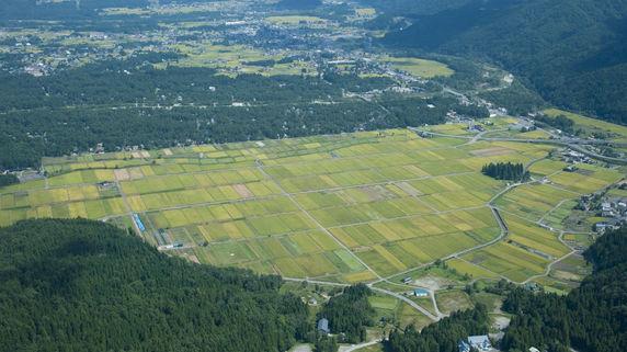 農地の種類によって異なる「農地以外への転用」の可能性