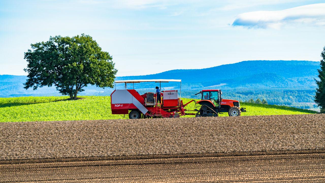 日本の農作物を海外へ JAL、ベンチャーと提携 株価への影響度は?