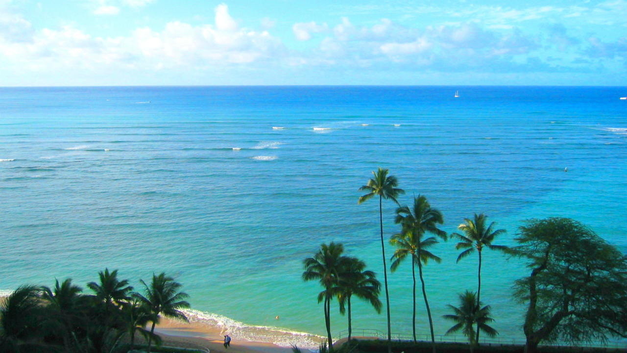 築55年のホテルコンドWaikiki Shoreに見る「立地」の重要性