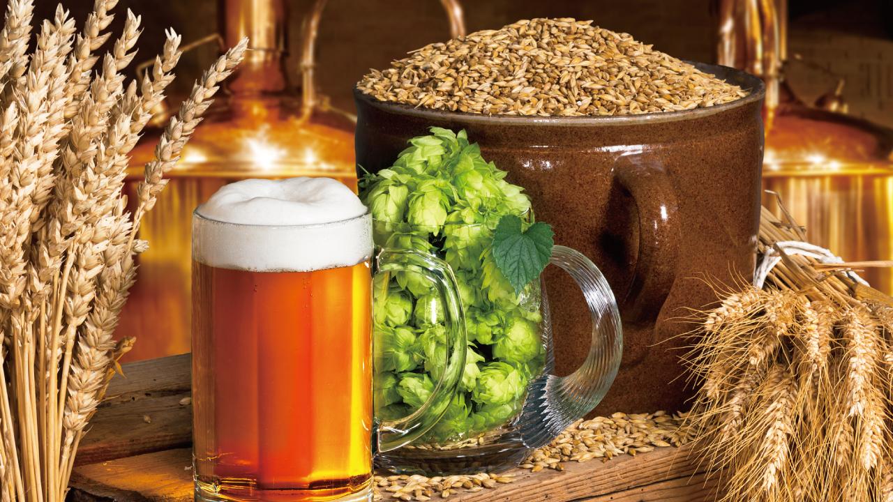 実は栄養満点? 目からウロコの「ビールの健康効果」