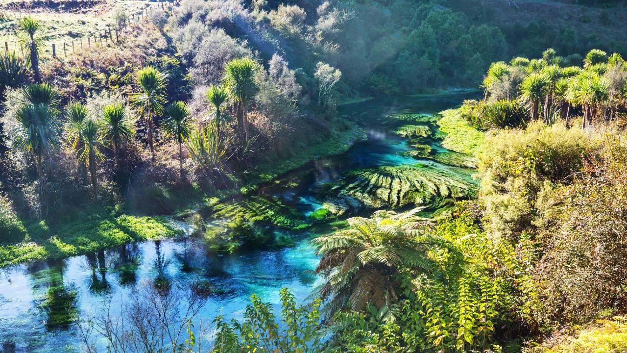 【NZ不動産】発展するワイカト地方、注目度高く価格も上昇中