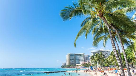 留学先レポート――米国・ハワイ①
