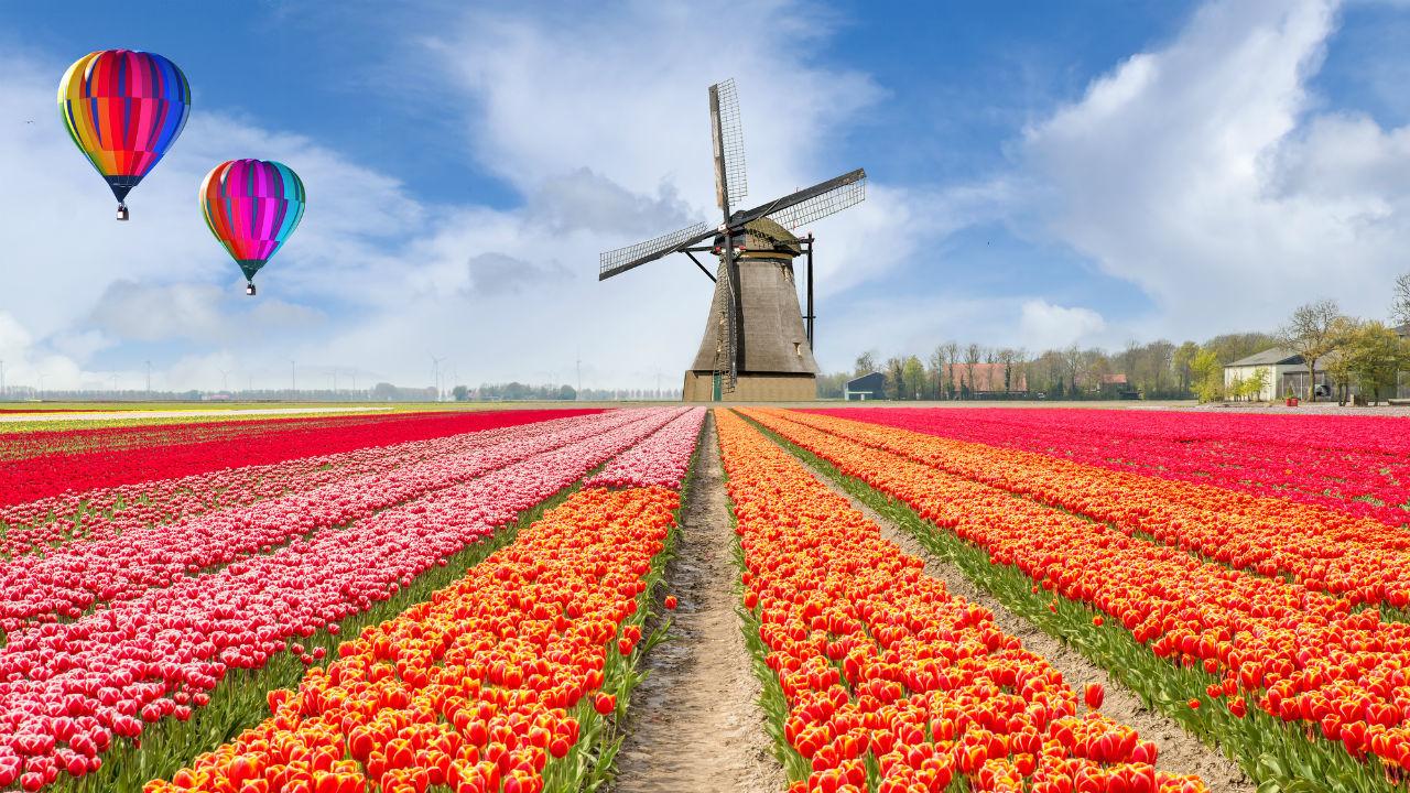 農業の研究開発とイノベーションが進む…オランダ経済の概況