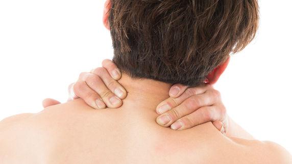 肩関節の基本的な動作で使われる筋肉とは?
