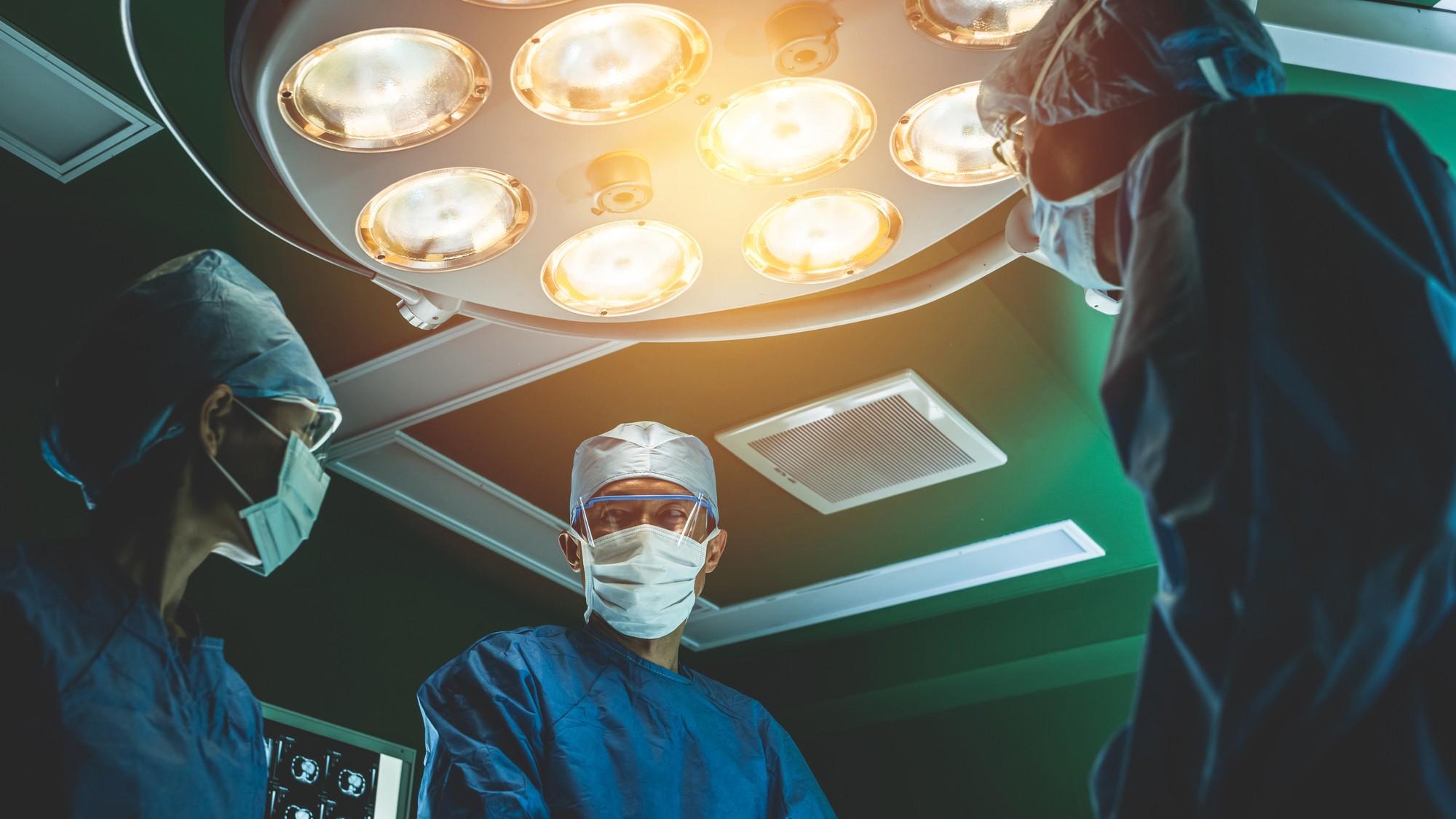 「神経」「動脈」など現代に残る医学用語も…解体新書のウラ話