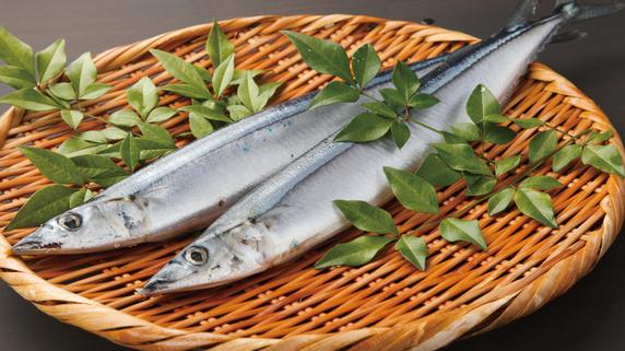魚によく含まれる良い油「DHA」「EPA」の効能