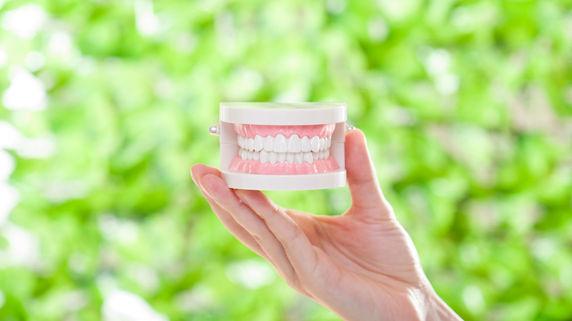 矯正歯科治療において「抜歯=悪」ではない理由