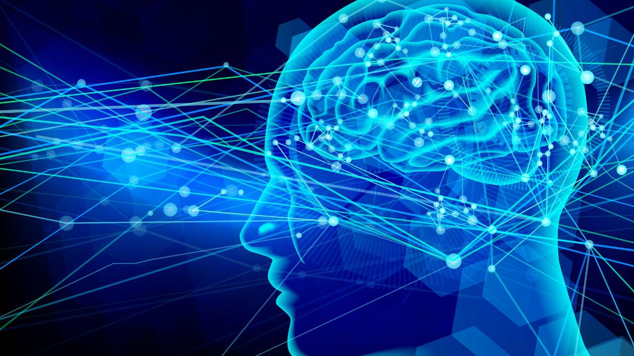 脳の活動に「酸素」と「糖」はどのように関わっているのか?