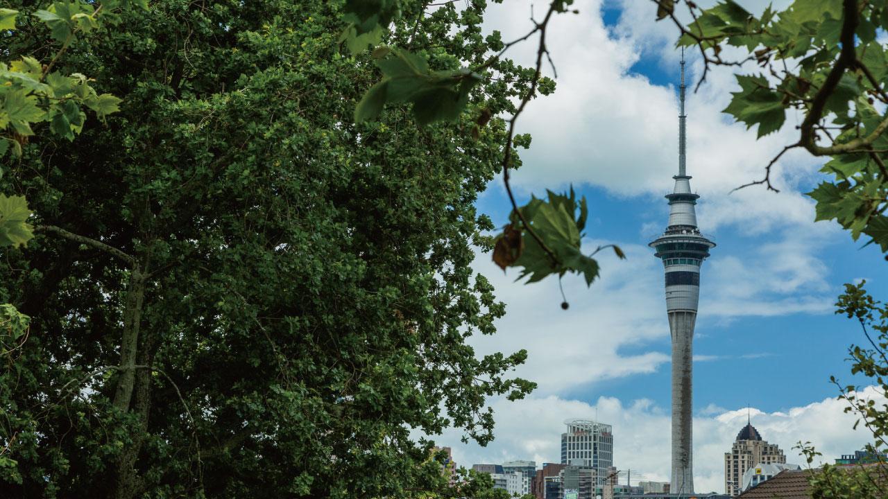 NZの新興住宅地「ポケノ」の開発状況と投資価値を探る