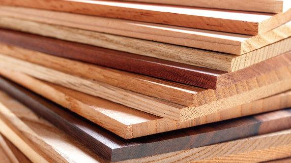 ドイツで利用が急拡大する「木質エネルギー」の現状