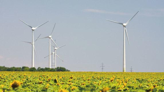 トランプ政権下における「再生可能エネルギー」の位置づけ