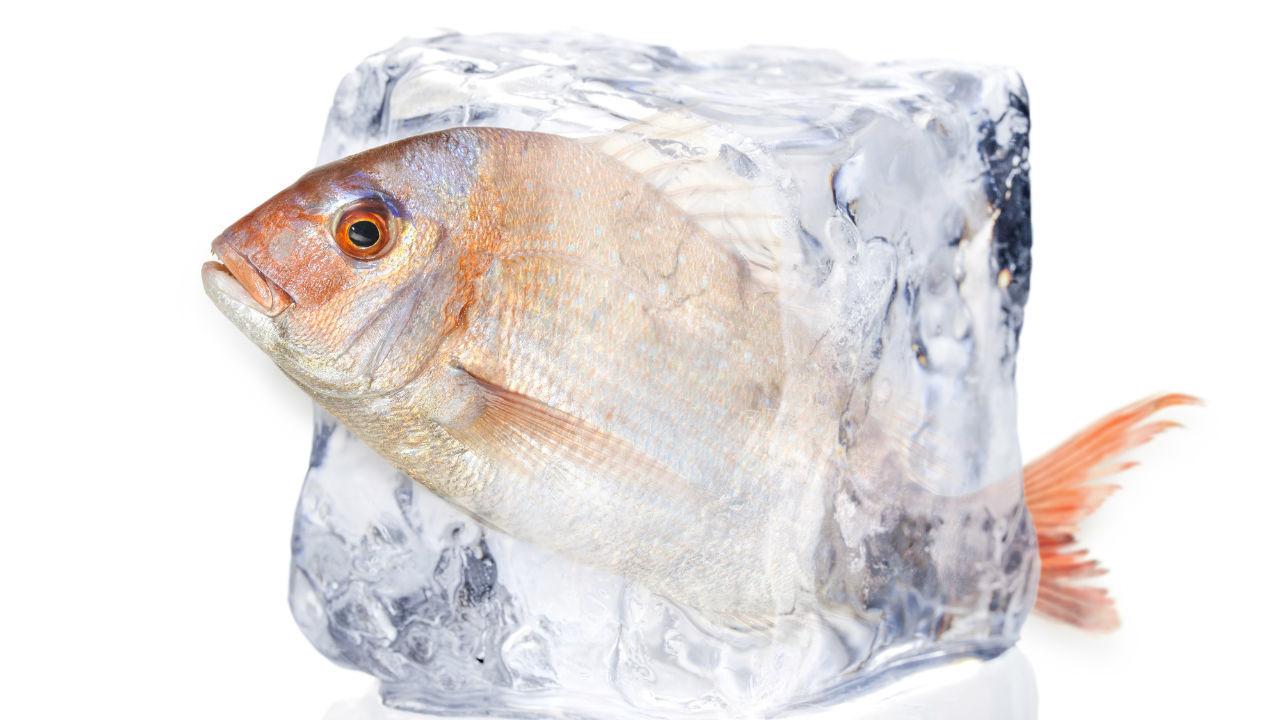 東南アに低温物流網 冷凍・冷蔵倉庫関連銘柄に注目