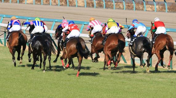 追悼・ディープインパクト…競走馬の償却年数は「4年」の衝撃