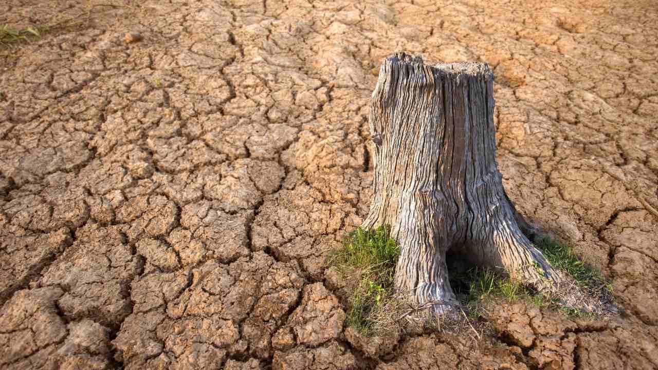米気候変動サミット「ムーンショット」は実現なるか?