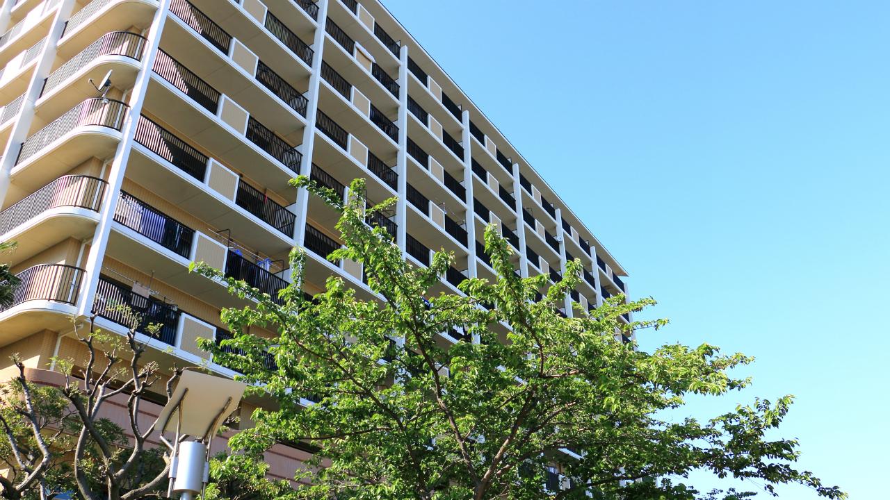 マンションの賃貸管理会社と建物管理会社の役割とは?