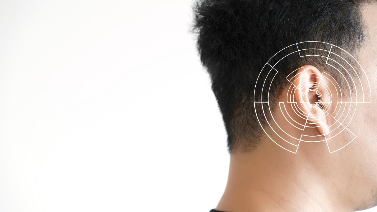 めまい・耳鳴り・・・構造から理解する「耳・脳」のしくみ