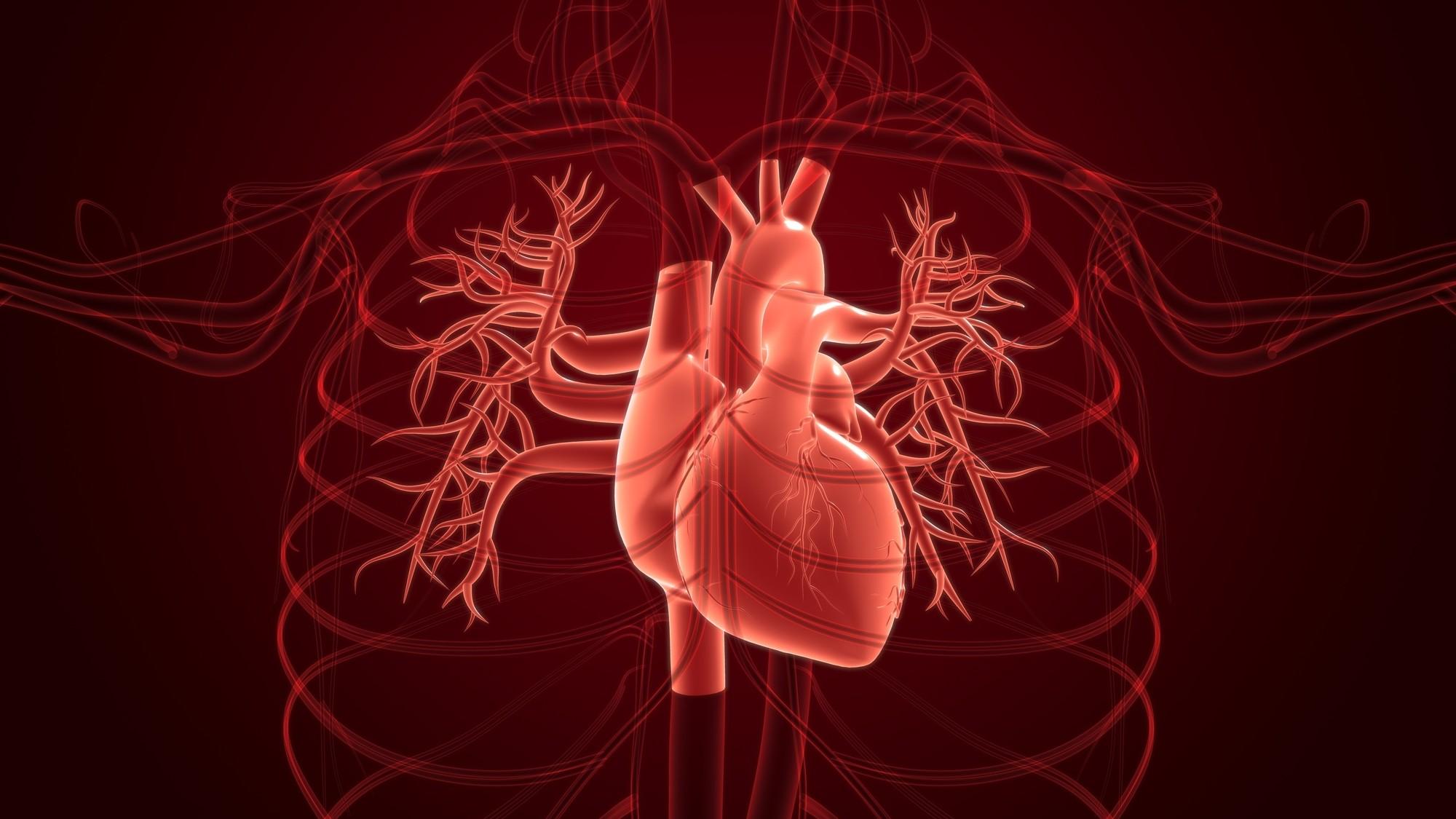 世界中から大絶賛された…世界初の「人工心臓」を作った日本人