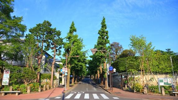 「田園調布」と「成城」…20年後も高級住宅地でいられるか?