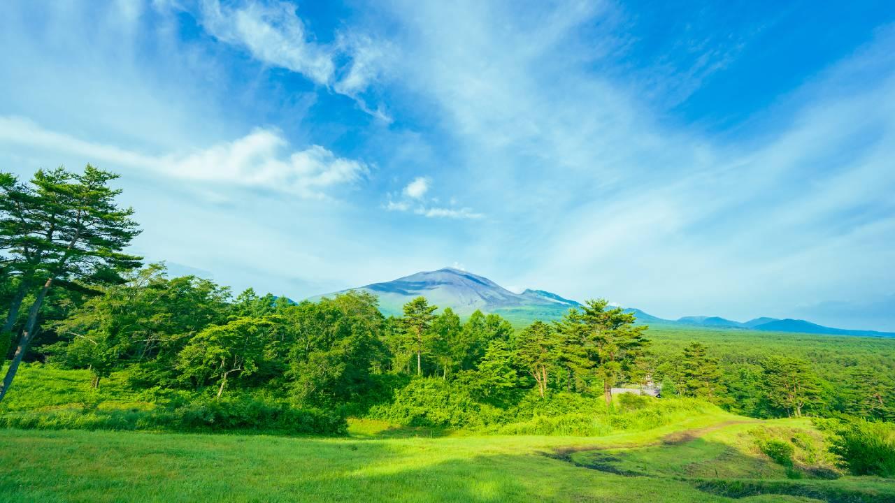 「東京・銀座」で地価下落も「長野・軽井沢」で上昇が続くワケ