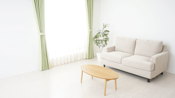 宿泊業界を悩ませる「トコジラミ」の問題とは?