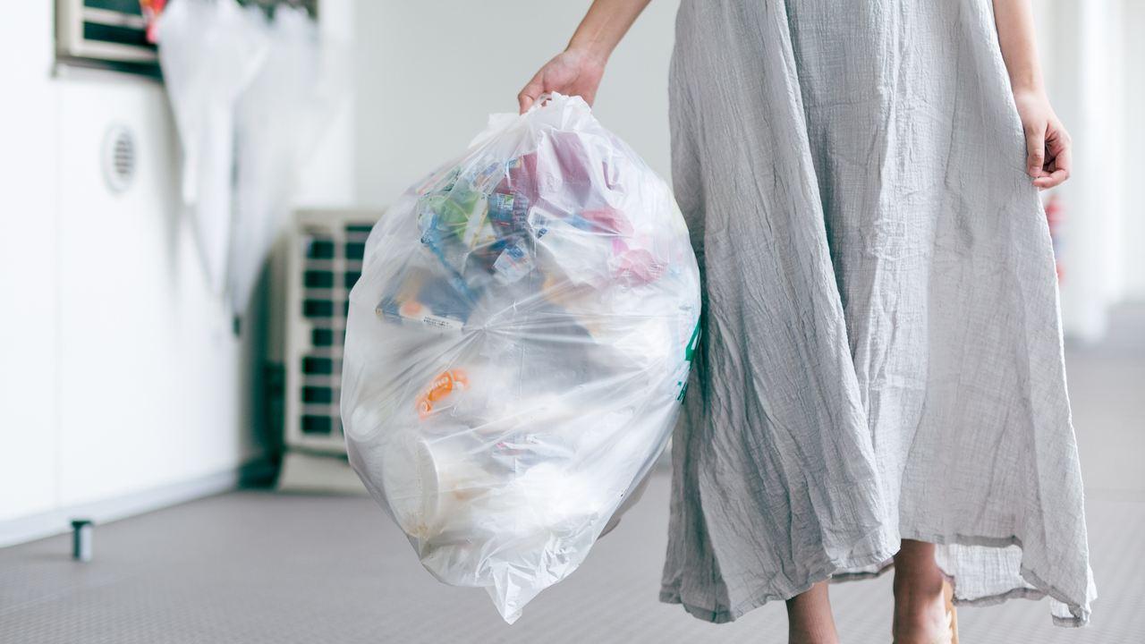「アシダカグモ飼育中」…共同住宅のゴミ問題・次世代型解決策