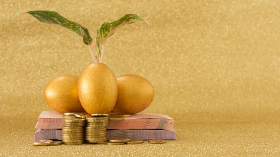 資産の成長を目的とした「育てる投資」の概要