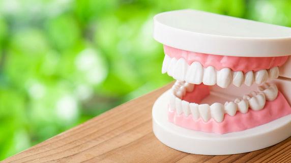 """歯を守る""""セルフケアプログラム""""が人気を博す理由"""