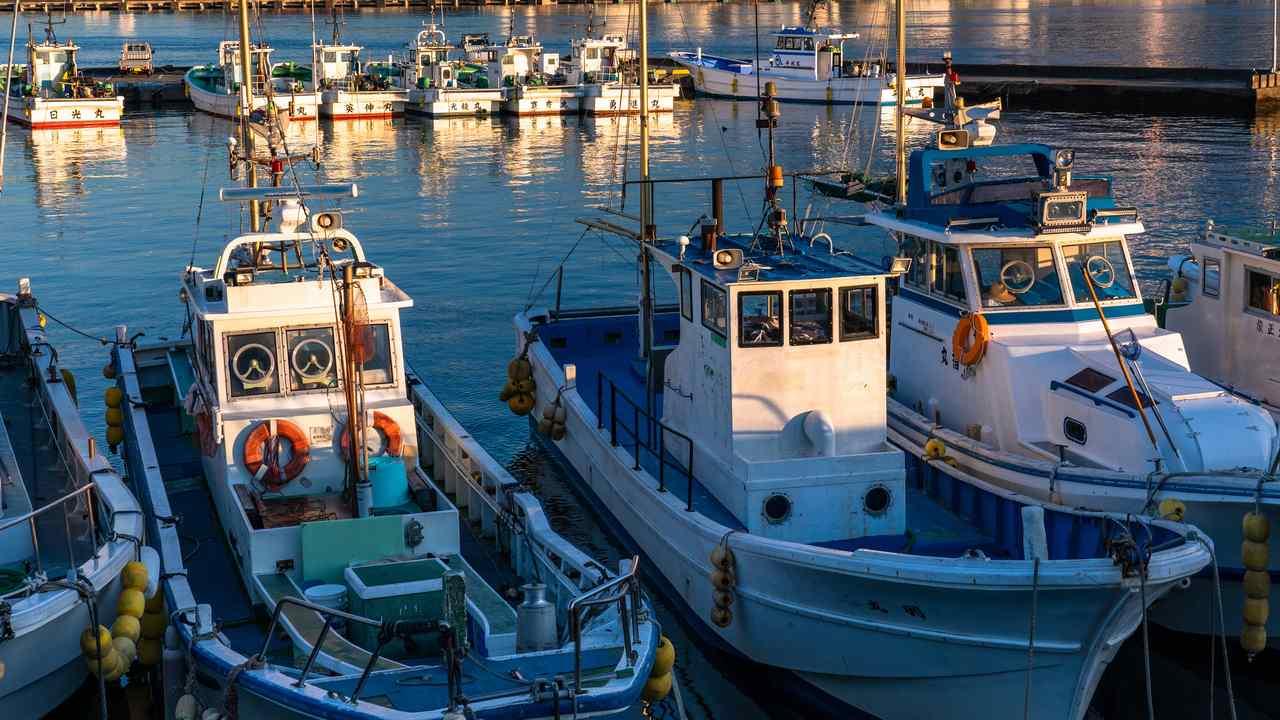 養殖漁業ファイナンスに関する法的考察―その2