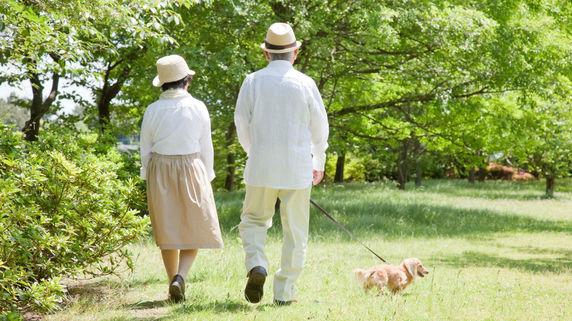 子どもがいない夫婦…遺言書を作成したらどうする?