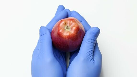 医師で文豪の森鴎外…「意外にも偏食だった!?」驚きの食事内容