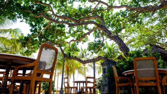 バリ島のヴィラ経営・・・「写真栄え」を意識した改装のメリット