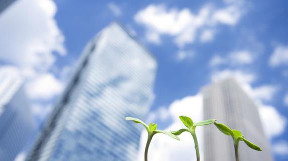 小さな種を大きな事業へ…中小企業のパートナーシップの重要性