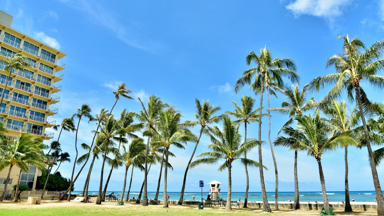子どもに「投資運用」を学ばせるハワイの教育