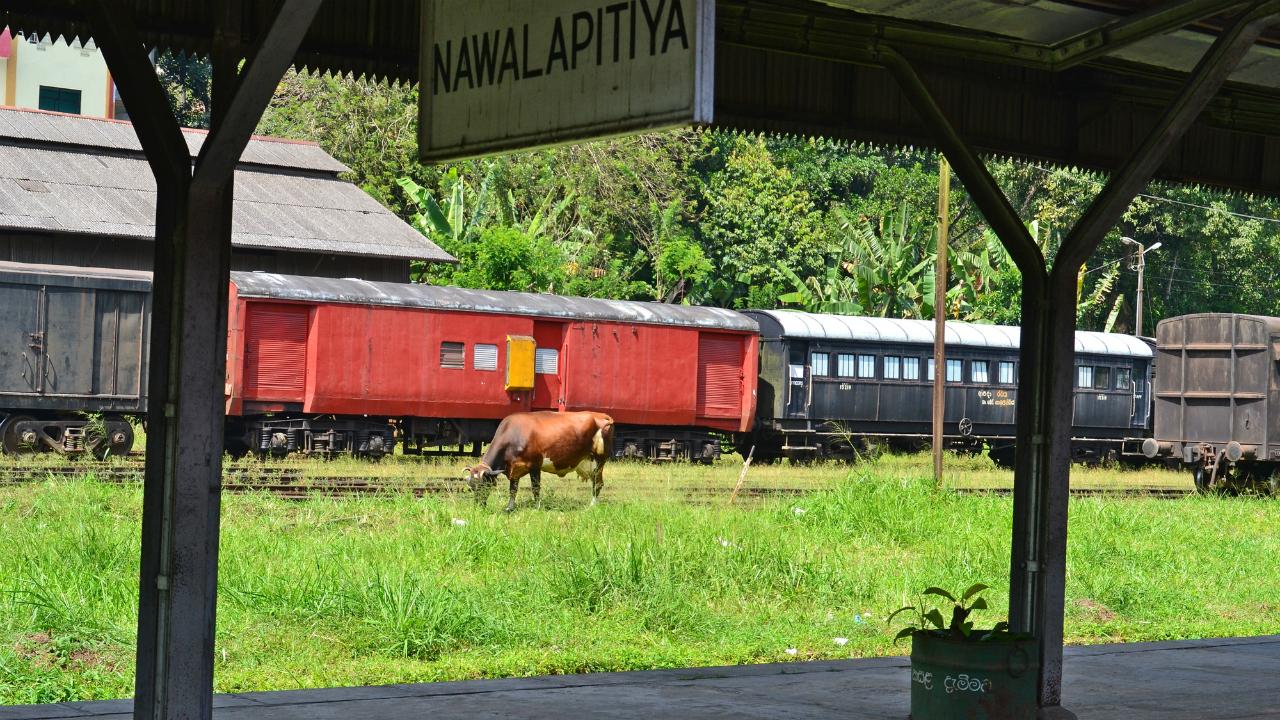 スリランカの「外貨準備の妥当性」を検証する