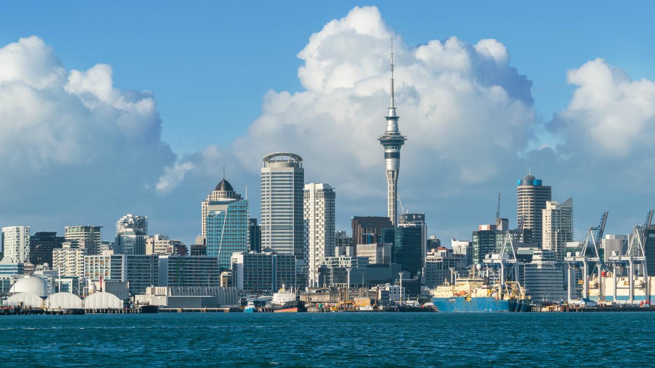 NZの祭典「ジャパンデイ」に見えた、貿易ビジネスの可能性