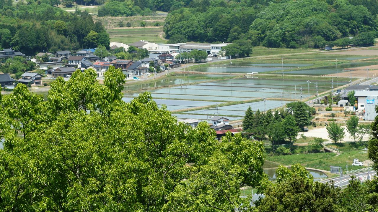 地域の活性化・支援に特化――茨城県笠間市「かぽかカード」
