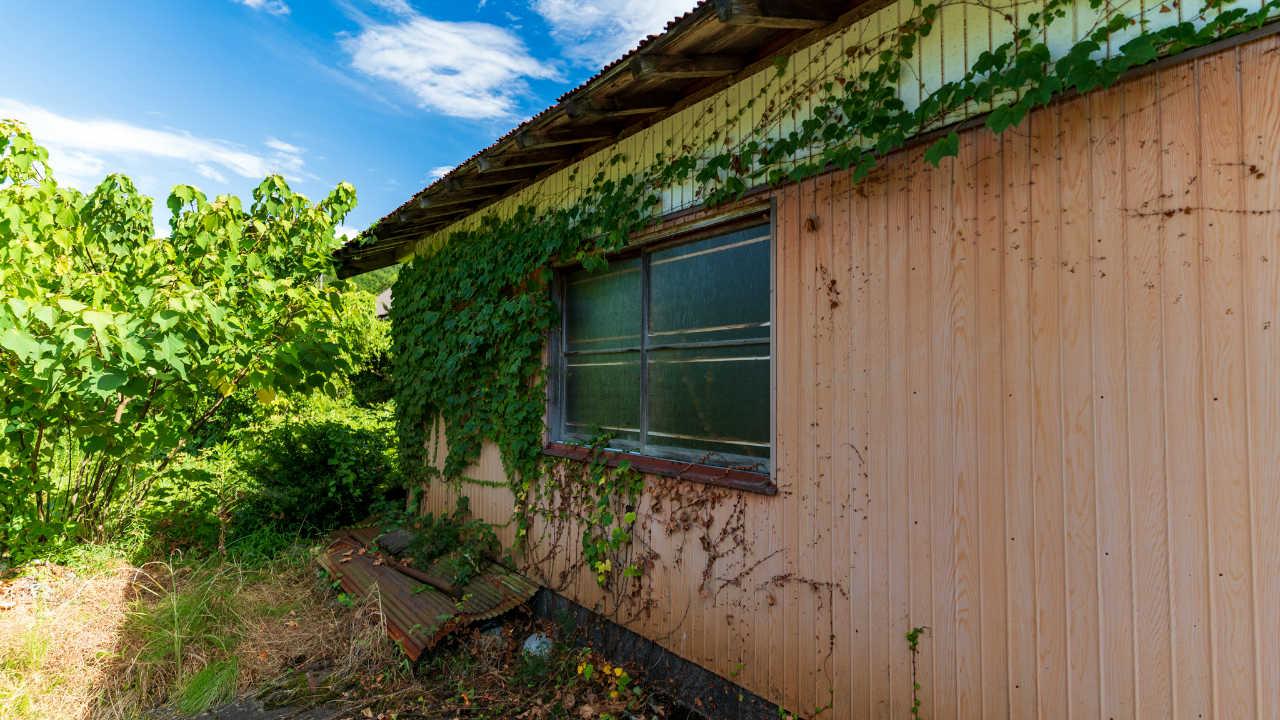 恐しい…水で急速に腐った「日本の木の家」のとんでもない末路