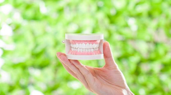 マウスピースによる治療も…高年齢層に広がる矯正歯科治療
